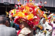 Super flower hat IMGP3749