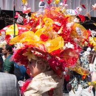 Super flower hat IMGP3749